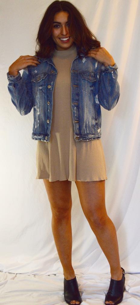 Jacket: ZARA Dress: Forever 21