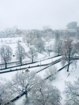 View of the Boston Common