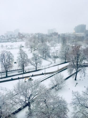 View of the Boston Common